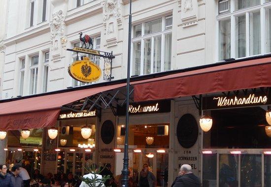 Что посмотреть в Вене за 1 день: 7 маршрутов на любой вкус